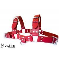 Avalon - Harness Rød