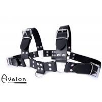 Avalon - Harness sort