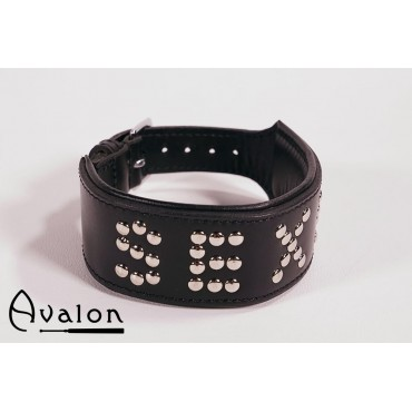 Avalon - Collar Sexy - Sort